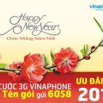goi-cuoc-3g-vinaphone-su-dung-tet-2017
