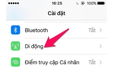 bat-mang-4g-tren-dien-thoai-iphone-2