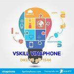 Dịch vụ VSkill Vinaphone