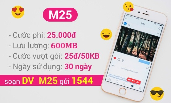 Cách đăng ký gói cước M25 Vinaphone