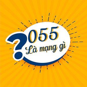 Sim đầu số 055 là mạng gì? 055 là của mạng di động ảo Reddi Mobile
