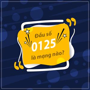 0125 là mạng gì? Đầu số 0125 đổi thành đầu 10 số nào?